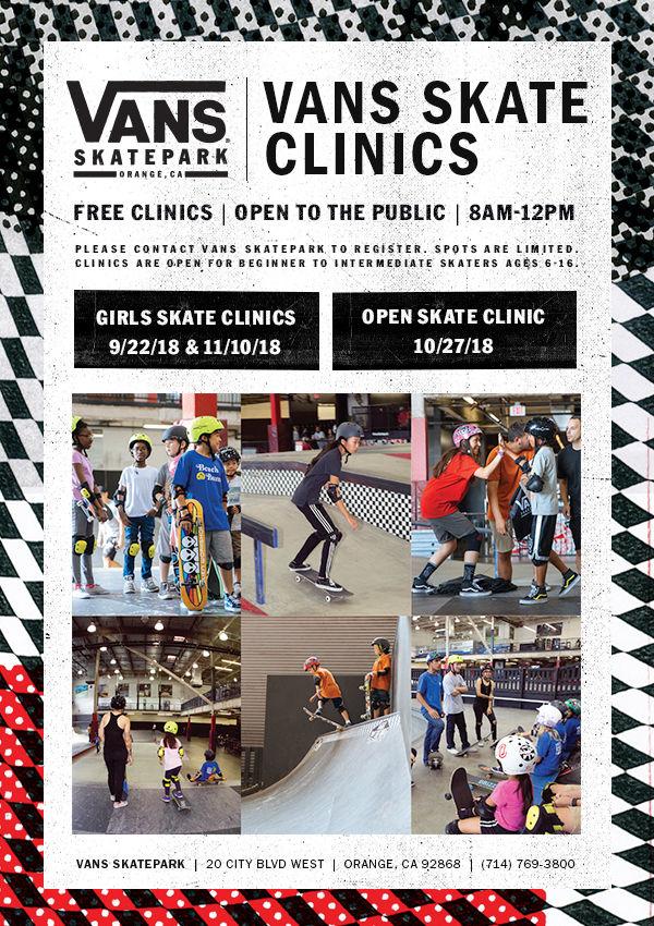 Vans Skate Clinic Orange
